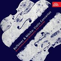 Přední strana obalu CD Bořkovec, Mácha: Koncerty pro housle