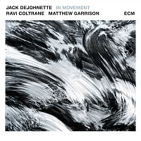 Jack DeJohnette, Ravi Coltrane, Matt Garrison – In Movement