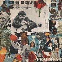 Thorstein Bergman – Fragment