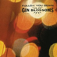 Gin Blossoms – Follow You Down