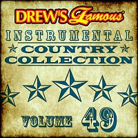The Hit Crew – Drew's Famous Instrumental Country Collection [Vol. 49]