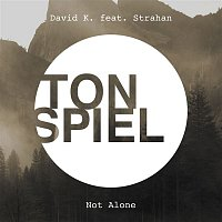 David K – Not Alone (feat. Strahan)