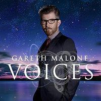 Přední strana obalu CD Voices