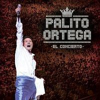 Palito Ortega – El Concierto