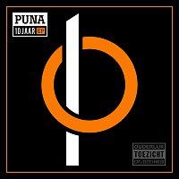 Různí interpreti – PUNA 10 JAAR - EP