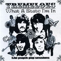 The Tremeloes – What a State I'm In: The Psych-Pop Sessions