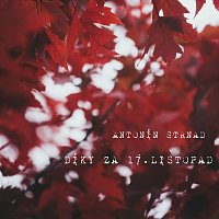 Antonín Strnad – Díky za 17. listopad