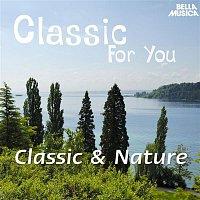 Alberto Lizzio,Alexander Pervomaysky, Baroque Festival Orchestra – Classic for You: Classic & Nature