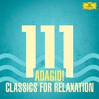 Různí interpreti – 111 Adagio! Classics For Relaxation