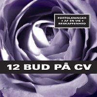 Různí interpreti – 12 Bud Pa CV