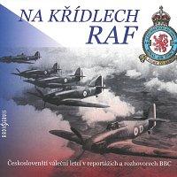 Tomáš Černý – Na křídlech RAF