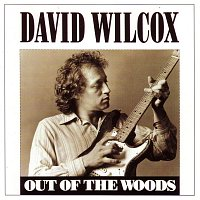 David Wilcox – Out Of The Woods