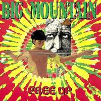 Big Mountain – Free Up