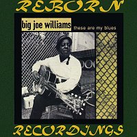 Big Joe Williams – These Are My Blues (HD Remastered)