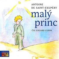 Přední strana obalu CD Saint-Exupéry: Malý princ