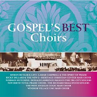 Různí interpreti – Gospel's Best Choirs