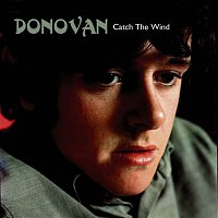 Donovan – Catch the Wind