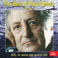 Přední strana obalu CD The Best of Pavel Bobek (Volume II.) - Dík, že smím pár přátel mít