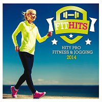 Různí interpreti – Fit Hits 2014