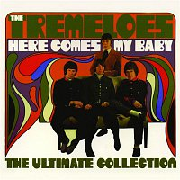 The Tremeloes – Here Comes My Baby : The Ultimate Collection