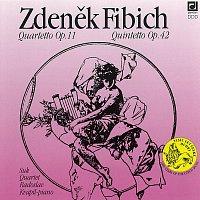 Přední strana obalu CD Fibich: Komorní tvorba