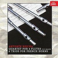 Různí interpreti – Rejcha: Kvartet pro 4 flétny D dur, 6 trií pro lesní rohy