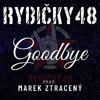 Rybičky 48, Marek Ztracený – Goodbye