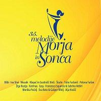 Různí interpreti – 35. melodije Morja in Sonca