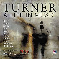 Různí interpreti – Turner: A Life In Music