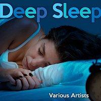 Various Artists.. – Deep Sleep Playlist
