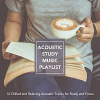 Různí interpreti – Acoustic Study Music Playlist: 14 Chilled and Relaxing Acoustic Tracks for Study and Focus