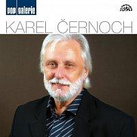Karel Černoch – Pop galerie