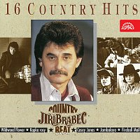 Country Beat Jiřího Brabce – Country Beat Jiřího Brabce 16 Country Hits