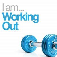 Různí interpreti – I Am Working Out