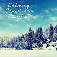 Bodhi Holloway, Coco McCloud, Juniper Hanson, Thomas Benjamin Cooper – Calming Christmas Playlist