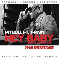 Pitbull, T-Pain – Hey Baby (Drop It To The Floor) - The Remixes EP