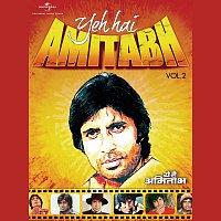 Přední strana obalu CD Yeh Hai Amitabh - Vol.2