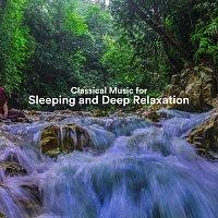 Chris Snelling, Chris Mercer, Nils Hahn, Max Arnald, Robin Mahler, James Shanon – Classical Music for Sleeping and Deep Relaxation