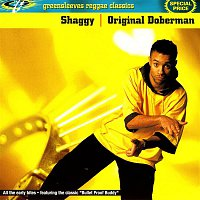 Shaggy – Original Doberman
