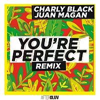 Charly Black, Juan Magan – You're Perfect [Remix]