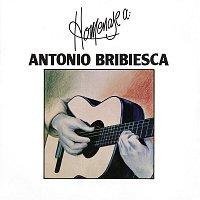 Antonio Bribiesca – Homenaje a Antonio Bribiesca