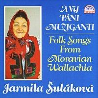 Jarmila Šuláková – A vy páni muziganti