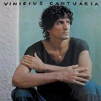 Vinicius Cantuaria – Gávea de Manha
