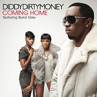 Diddy - Dirty Money, Skylar Grey – Coming Home
