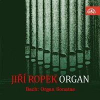 Jiří Ropek – Bach: Sonáty pro varhany