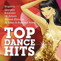 Various Artists.. – Top Dance Hits
