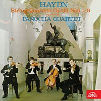 Přední strana obalu CD Haydn: Smyčcové kvartety č. 4 - 6