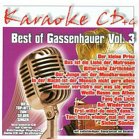 Karaokefun.cc VA – Best of Gassenhauer Vol.3