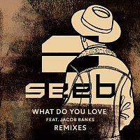 Seeb, Jacob Banks – What Do You Love [Remixes]