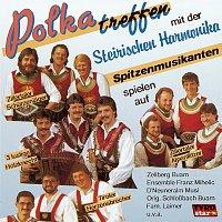 Různí interpreti – Polkatreffen mit der Steirischen Harmonika